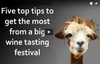 5 essential wine tasting tips